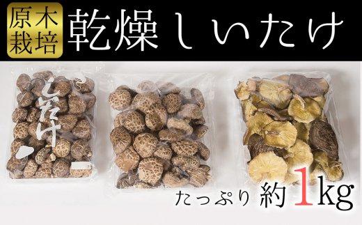 【ふるさと納税】超お得で贅沢!臼杵産ふるさと乾しいたけCセット(計1kg)