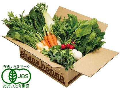 安心安全の有機栽培!ohanaのいっしょに野菜セット(11品目)