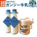 【ふるさと納税】6ヶ月定期便 貴族の牛乳! ガンジー牛乳 9...