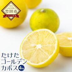 【ふるさと納税】たけたゴールデンカボス4kg(50玉〜60玉程度)かぼす黄色柑橘果物みかんフルーツ大分県産九州産送料無料