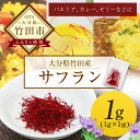 【ふるさと納税】大分県竹田産サフラン 1g