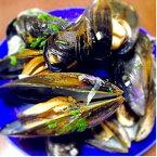 【ふるさと納税】豊前海の黒く輝く宝石生鮮ムール貝