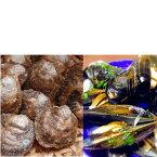 【ふるさと納税】豊前海産特選生鮮ムール貝とイタボガキの詰合せ(A)