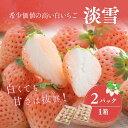 【ふるさと納税】【先行予約】白いちご「淡雪」・2パック入×1
