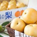 【ふるさと納税】野菜ソムリエ石児さんの「特選 新高梨5kg」