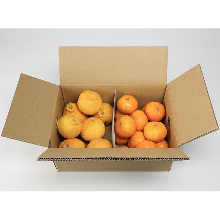 【ふるさと納税】【ご家庭用】ハウスデコポン&青島みかん 各2kg 詰合 予約 果物 フルーツ<06-A0066>