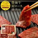 【ふるさと納税】豊後牛肩ロース 焼肉用 約680g 九州産 ...