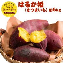 【ふるさと納税】はるか姫さつまいも約6kg甘藷唐芋野菜根菜焼きいも豊後大野市産九州送料無料