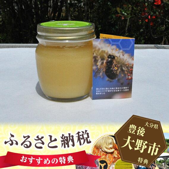 【ふるさと納税】No.014 ミツバチが育む山郷 ニホンミツバチの純粋蜂蜜 310gセット