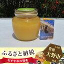 【ふるさと納税】No.048 ミツバチが育む山郷 ニホンミツバチの純粋蜂蜜 690gセット