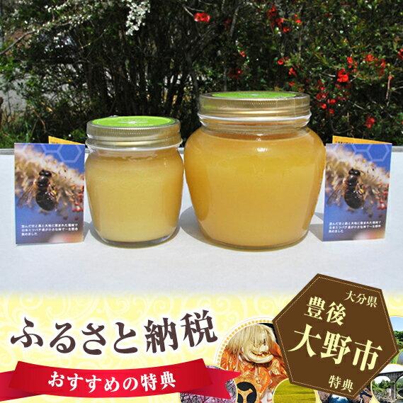 【ふるさと納税】No.059 ミツバチが育む山郷 ニホンミツバチの純粋蜂蜜 1,000gセット