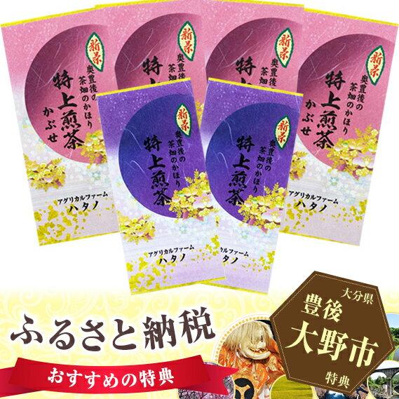 【ふるさと納税】No.074 奥豊後茶畑のかほりハタノ茶(8)