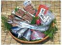 【ふるさと納税】磯武の国東海鮮プレミアムセット・通...