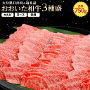 【ふるさと納税】おおいた和牛3種盛(カルビ・ロース・赤身)(