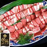 【ふるさと納税】【日出ポーク焼肉セット】豚バラ焼肉用(500g)豚肩ロース焼肉用(500g)【1078235】