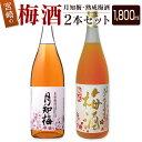 【ふるさと納税】宮崎の梅酒2本セット