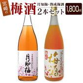 宮崎の梅酒2本セット