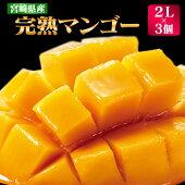【ふるさと納税】宮崎県産完熟マンゴー(2L×3個)【K】