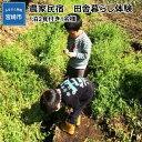 【ふるさと納税】農家民宿 田舎暮らし体験(1泊2食付き1名様)