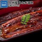 【ふるさと納税】九州産うなぎ蒲焼4尾(計600g)