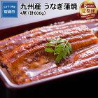 【定期便】九州産うなぎ蒲焼4尾(計600g)×5か月