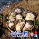 【ふるさと納税】延岡産天然岩牡蠣(生食用)10kg(小)(2019年4月から発送開始)