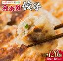 【ふるさと納税】<戸村本店特製味付>自家製餃子(10個×12