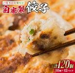 【ふるさと納税】<戸村本店特製味付>自家製餃子(10個×12パック)計120個