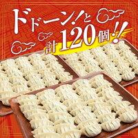 【ふるさと納税】大人気!!<戸村本店特製味付け>餃子10個×12パック(計120個)