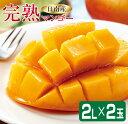 【ふるさと納税】期間・数量限定「日南産」完熟マンゴー(2L×...