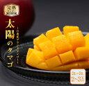 【ふるさと納税】≪糖度15度以上≫濃厚な甘み★完熟マンゴー「太陽のタマゴ」2〜3玉