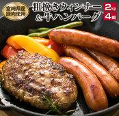 【ふるさと納税】粗挽きウィンナー2kg(県産豚肉使用)&牛ハンバーグ4個セット