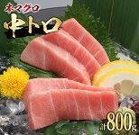 【ふるさと納税】鮮度抜群!!本マグロ中トロ(計800g)