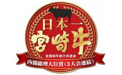 【ふるさと納税】【訳あり増量】A4等級以上小林市産宮崎牛バラエティ焼肉用800g 画像2
