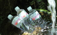 【ふるさと納税】【霧島山麓の天然中硬水】細野の天然水(1箱:555ml×24本)