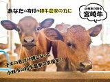 【ふるさと納税】【和牛農家支援プログラム】子牛の命名権!