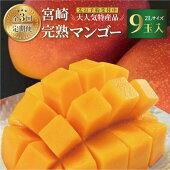 【ふるさと納税】【定期便全3回】<先行予約受付中!2022年5月以降発送予定>みやざき完熟マンゴー(2Lサイズ9玉入)×3回季節のフルーツ果物くだものまんごー