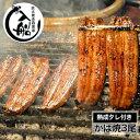 【ふるさと納税】炭火焼一筋125年「うなぎの入船」かば焼3尾...