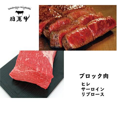 【ふるさと納税】都萬牛 ブロック肉セット