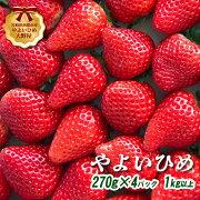 【ふるさと納税】【先行予約】宮崎県西都市苺大野屋やよいひめ270g×4パック