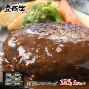 【ふるさと納税】宮崎和牛「齋藤牛」手作りハンバーグセット(120g×6個)
