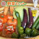【ふるさと納税】【農家直送!】 野菜詰合せセット(約10種類)