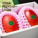 【ふるさと納税】完熟マンゴー L×2個(西都産)鉢植栽培【数...
