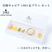 【ふるさと納税】「宮崎キャビア」12g&ブリニセット「MIYAZAKICAVIAR1983」<2.7-3>