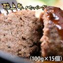 【ふるさと納税】極上ハンバーグ(15個)牛肉100%【合計1.5kg】 有田牧場スペシャルポーション