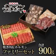 【ふるさと納税】宮崎和牛齋藤牛焼肉&ホルモンファミリーセット(4種×5P)合計900g