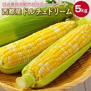 【ふるさと納税】西都産白と黄色が鮮やかなスイートコーン【ドルチェドリーム】約5kg