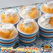 【ふるさと納税】『morino-fu』マンゴーカップソフト6個セット