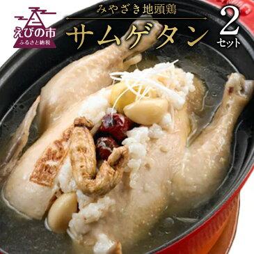 【ふるさと納税】みやざき地頭鶏サムゲタン 1.2kg以上 2セット 合計2.4kg 参鶏湯 鶏肉 韓国料理 にんにく なつめ もち米 栗 高麗人参 国産 九州産 送料無料