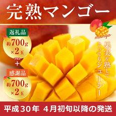 【ふるさと納税】宮崎県産完熟マンゴー約700g×2玉送料無料冷蔵果物果実ギフト贈り物